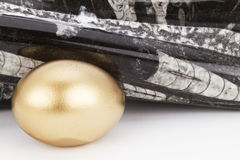 Gold egg and polished, ancient orthoceras fossil Stock Photo