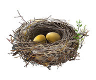 Gold Eggs in Bird`s Nest. Hand drawn vector illustration of a nest with two golden eggs, surrounded by green shoots, on transparent background stock illustration