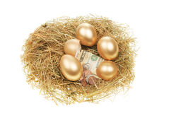 Gold eggs and money Royalty Free Stock Image