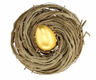 Gold eggs in the nest Stock Image