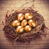 Gold Eggs stock photos