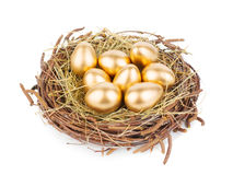 Gold Eggs royalty free stock images