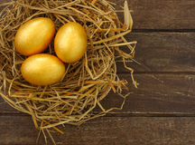Gold eggs Stock Images
