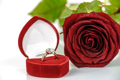 Gold engagement ring. With diamonds in an elegant velvet box on the background of red rose Royalty Free Stock Photo