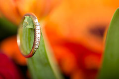 Gold engagement ring in flower Stock Photo
