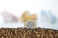 Gold euro coin Royalty Free Stock Photos