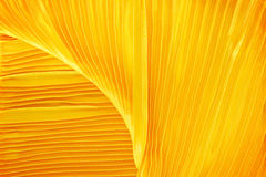Gold fabric silk Stock Images
