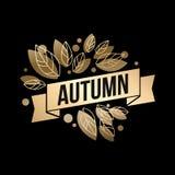 Gold fall design Stock Photos