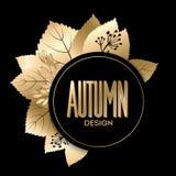 Gold fall design Royalty Free Stock Photos