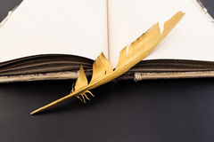 Gold feather and book on a black background Royalty Free Stock Images