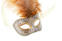 Gold feathered carnival mask Stock Photos