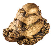 Gold feng-shui turtles Stock Photos