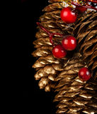 Gold fir-cone Stock Images