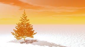 Gold fir tree Stock Photos