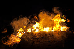 Gold fire. Perfect flames, burning wood during nightfall Stock Photos