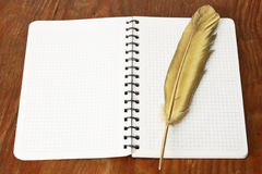 Gold firebird quill pen Royalty Free Stock Image