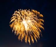 Gold firework. Golden firework spray against night sky,closeup Stock Photos