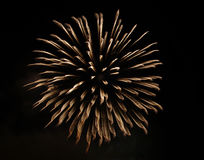 Gold fireworks Royalty Free Stock Images