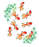 Gold fish. Chinese style painting -- gold fish, one kind of Asian art, normally can be used for Chinese new year Stock Photo