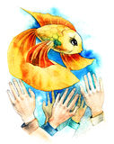 Gold fish. (Wsg painting stock illustration