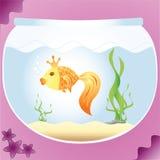 Gold fish. In aquarium-vector Royalty Free Stock Images