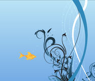 Gold fish. In blue water Royalty Free Stock Photos