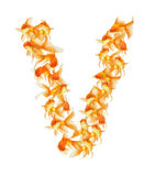 Gold fish alphabet letter. Isolated on white Royalty Free Stock Image