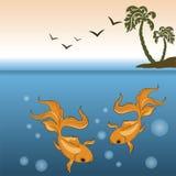 Gold Fish background Royalty Free Stock Image