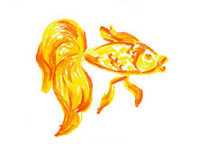 Gold fish drawing isolated Royalty Free Stock Photos