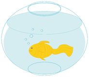 Gold fish in a fishbowl. Clip art illustration Stock Photography