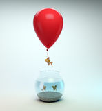 Gold fish flying away from. A fishbowl with the help of a balloon Stock Photography