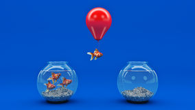 Gold fish flying away from a fishbowl with the help of a balloon. 3d rendering Stock Photography