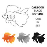 Gold fish icon cartoon. Singe aquarium fish icon from the sea,ocean life cartoon. Stock Photo
