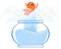 Gold fish jumping. Vector illustration of a gold fish jumping Royalty Free Stock Photo