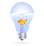 Gold fish in a light bulb vector. Vector illustration of a gold fish inside a light bulb full of water as an aquarium, related to clean energy, natural power Royalty Free Stock Images