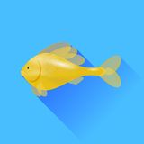 Gold Fish. Sea Cartoon Gold Fish Isolated on Blue Background Royalty Free Stock Image