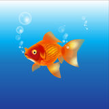 Gold fish in sea Royalty Free Stock Images