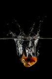 Gold fish splashing in water over black. Royalty Free Stock Photos