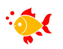 Gold fish vector icon. Illustration Royalty Free Stock Image