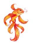 Gold fish Watercolor stock illustration