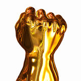 Gold Fist Stock Photography
