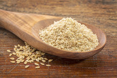 Gold flax seeds and meal Stock Images