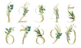 Free Gold Floral Number Set - Digits 1, 2, 3, 4, 5, 6, 7, 8, 9, 0 With Green Botanic Branch Bouquet Composition. Unique Collection For Stock Image - 165343941