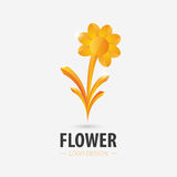 Gold flower logo. Vector illustration. Background Royalty Free Stock Photography
