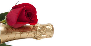 The neck of a champagne bottle with a red rose on white. A gold foil wrapped neck of a champagne bottle with a red rose on a white background with copy space Royalty Free Stock Image