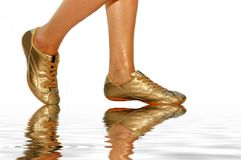 Gold footwear. On the white royalty free stock images