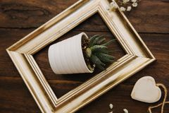 Gold frame with flower pot stock photos