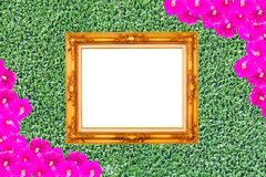 Gold frame on Grass green Royalty Free Stock Image