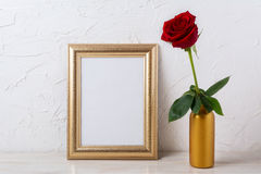 Gold frame mockup with dark red rose in vase Stock Images