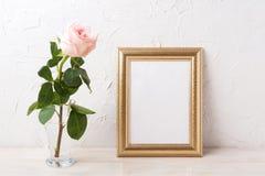 Gold frame mockup with tender pale pink rose in glass. Empty frame mock up for presentation artwork royalty free stock images